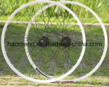 Best Price Good Quality Bicycle Rim