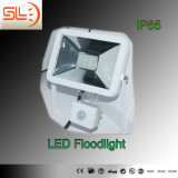 IP65 Slim LED Floodlight with Sensor