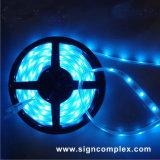 Colorful Changing Ribbon IP20 IP65 5050 Ce RoHS RGB LED Strip