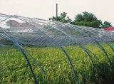100% Virgin HDPE Insect Net (hc50W/50*25)