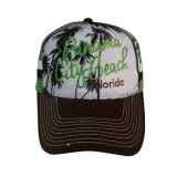 Hot Sale Cap with Printing and Embroidery Bb1734