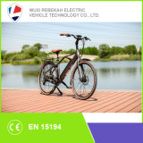 250W Fashion Dutchman Bike Electric Bike
