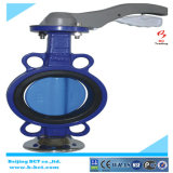 Center Line Wafer Type Butterfly Valve with Handle Bct-Wbfv-03