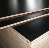 Black Hardwood Film Faced Plywood (GL-20)