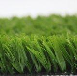 Artificial Grass, Football Grass, Soccer Grass, Sports, Playground Grass (PD/SF25)