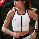High Quality Sport Body Building Women Sports Bra