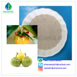 Pure Organic Garcinia Cambogia Extract Powder with Hydroxy Citric Acid