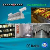 60 Watt High LED Tunnel Light Lamps