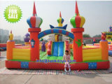 Brend New Inflatable Castle with Good Price (A205)