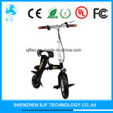 Two-Wheel Skateboard Foldable E-Bike Iron and Aluminum Material Scooter