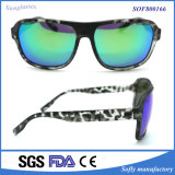 Popular Fashion Sunglasses with Nice Glasses Direct