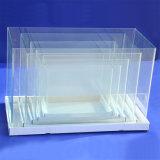 Square Aquarium Glass Fish Tank