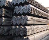 Hot Rolled Galvanized Angle Bar