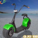 Christmas Gift Adult Electric Motorcycle with 800W /1000W Power
