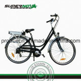 Brushless Rear Motor Electric Bicycle (SPC-006)