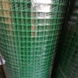 PVC Plastic Coated Welded Wire Mesh / Mesh Panel
