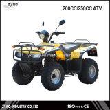 Road Quad Bike Loncin 200cc/250cc ATV Parts Street ATV