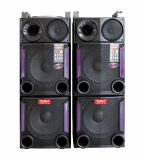 Dual 12 Inch Stage Portable Speaker Professional Big Power Passive Stage Bluetooth Speaker E248