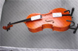 Cello / Middle Grade Cello/ Cello Bow (CLA-5)