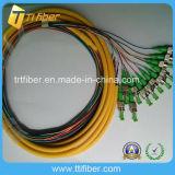 12 Color Singlemode St/APC Fiber Optic Pigtail