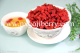 High Quality Goji Berry Supply in Different Specification (ZQY-0007)