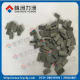 K10 Sintered Tungsten Carbide Saw Tips