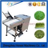 Experienced Green Bean Cutter Machine China Supplier
