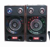 Professional Stage Bluetooth DJ Speaker F238