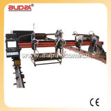 Gantry Type CNC Metal Cutting Machine (AUPAL-3000-6000)