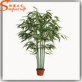 Garden Decoration Plastic Product Artificial Bonsai Lucky Bamboo