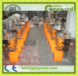Orange Juice Machine for Commercial Use