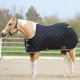New Design Horse Coat for Sale