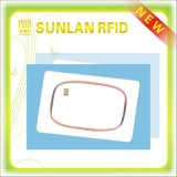 OEM Inlay for RFID Smart Card