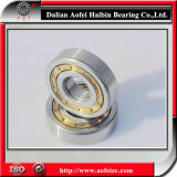 High quality NUP313M cylindrical roller bearing