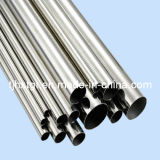 Stainless Steel Pipe (tube), Stainless Steel Roll (304/316)