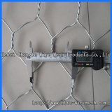 (PVC / Hot / Electric) Gabion Wire Mesh (6*8 8*10)