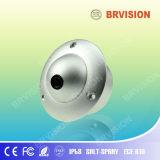 Standard Mini Ceiling Dome Camera, I