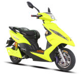 1000W Electric Scooter with Disk Brakes