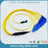 MPO-Sc12 Single Mode Duplex Fibers Optic Patch Cord