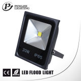 Hot Sale 30W LED Floodlight with CE RoHS Approved (PJ1110)