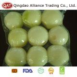 New Crop Fresh White Onion