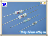Rxf Wirewound Fuse Resistor with ISO9001