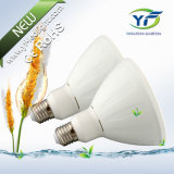 E27 5W 7W 15W LED Lantern with RoHS CE