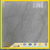 Italian Carrara White Marble Tile for Wall Flooring