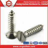 DIN7972 Slotted Coutersunk Self Tapping Screw