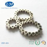 Sintered Small Size NdFeB Ring Shaped Fridge Magnets