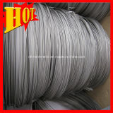 Chines Supplier Manufacturing Titanium Wire for Fishing
