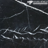 Polished Nero Marguina Marble Slabs for Flooring & Wall (MT061)