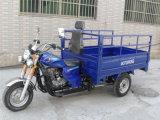 Heavy Duty Durable Cargo Three Wheel Motor Rear Axle Tricycle
