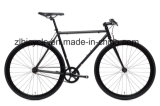 Urban Cyclist Hot Sale Single Fixie Gear Bicycles